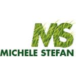 Michele Stefan